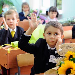 Школы Вязьмы